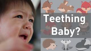 Do Teething Babies Need Medicine on Their Gums? No - Video Youtube