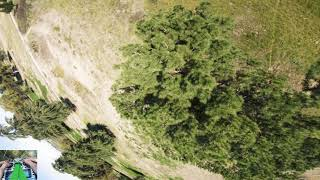 FPV Freestyle Flight Log - Day 234