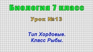 Биология 7 класс Урок 13