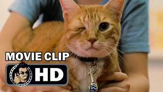 GIFTED Movie Clip   One Eyed Cat (2017) Chris Evans Drama HD