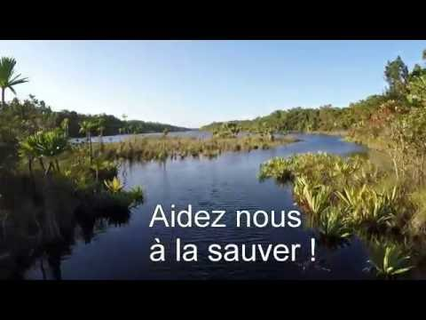 Madatrek : sauvons la forêt de Vohibola