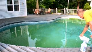 How To Clean A Green Swimming  Pool