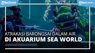 Meriahkan Perayaan Imlek, Sea World Ancol Gelar Atraksi Barongsai Dalam Air pada 12-14 Februari 2021