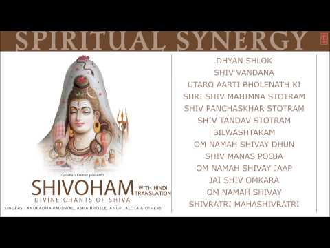 Spiritual Synergy Shivoham Divine Chants of Shiva HINDI Anuradha Paudwal [Full Audio Songs Juke Box]