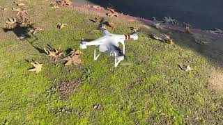 DJI Phantom Test
