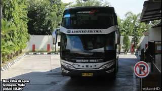 TRIP REPORT | Naik Bis Rosalia Indah + Ada Pramugaranya | Executive Plus