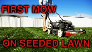 First Mow On My Lawn!