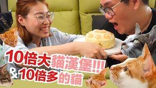 十倍大貓漢堡 !!! 十倍多的貓喵喵喵喵 feat.阿晋【貓主食食譜】好味貓廚房EP94