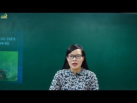 Ngữ Văn Lớp 6–Bài học đường đời đầu tiên Tô Hoài ngữ văn lớp 6