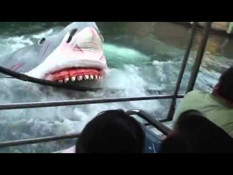 Video Ikan Jerung Menyerang - YouTube.FLV