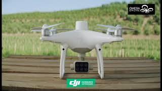 Phantom 4 Multiespectral para agricultura de precisión