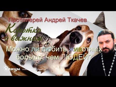 https://youtu.be/kfBooFN0l2Y