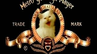 MGM Kitty   from YouTube by Offliberty