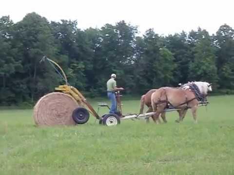 Конный привод вместо небольшого трактора. Конный рулоновоз.