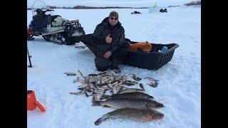 Тренер рыбной ловли в запределье