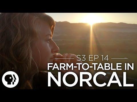 Original Fare – Farm to Table in Northern California   Original Fare   PBS Food