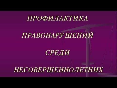 """Родительское собрание. МБОУ """"Школа №169"""". Профилактика правонарушений"""