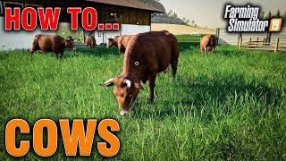 FS19 How To... Cows Guide to Buying & Feeding For 100% Productivity