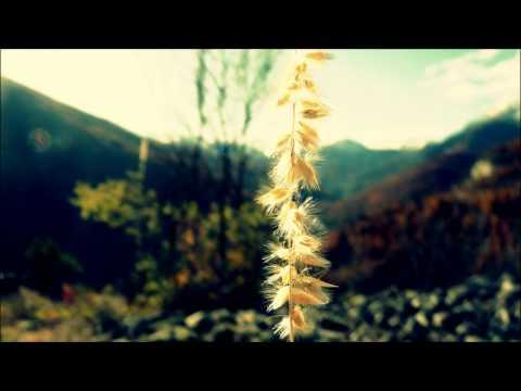 Chet Faker - I'm Into You (Artur Vilao Fakes It Edit)