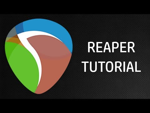 Download How To Assign Interface Inputs To Tracks On Reaper