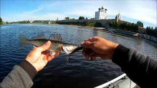 Базы отдыха для рыбалки псков плесков