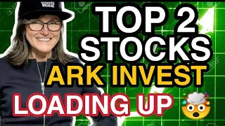ARK INVEST BUYING THESE STOCKS RIGHT NOW!! STOCKS TO BUY NOW? PLTR STOCK A BUY NOW? LGVW STOCK A BUY