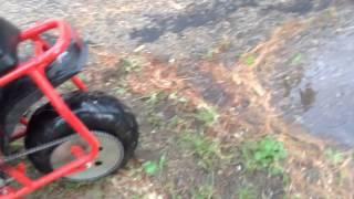 Mini bike Burnouts, Fails, and romp