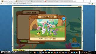 animal jam codes 2018 for pets - 免费在线视频最佳电影电视