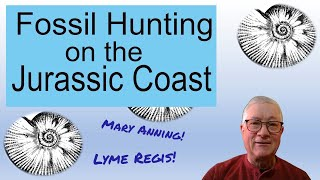 Fossil Hunting on the Jurassic Coast