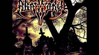 VOICES FROM THE GRAVES - ABATTORY.wmv