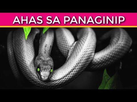Wag Mo Balewalain Ang PANAGINIP ng AHAS - Interpretasyon, Kahulugan at Simbolo Nito