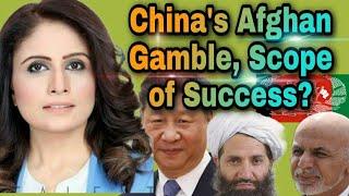 Aaliya Shah Official