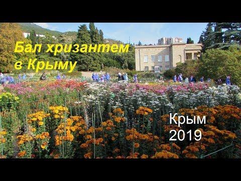 Бал хризантем в Крыму. Никитский ботсад 01 ноября 2019