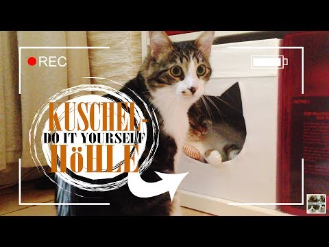 Themendienstag | DIY Katzenhöhle | Brother B's and little Eva