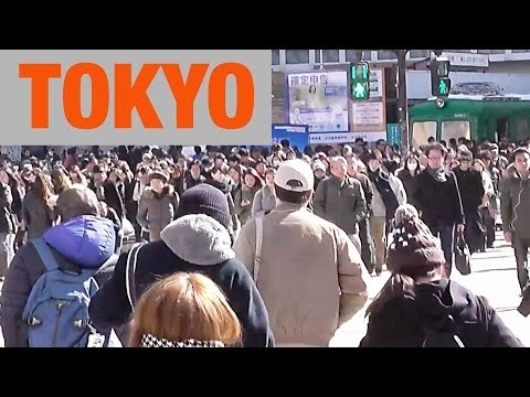 Tokyo & Yokohama Travel VLOG - SNOW STORM