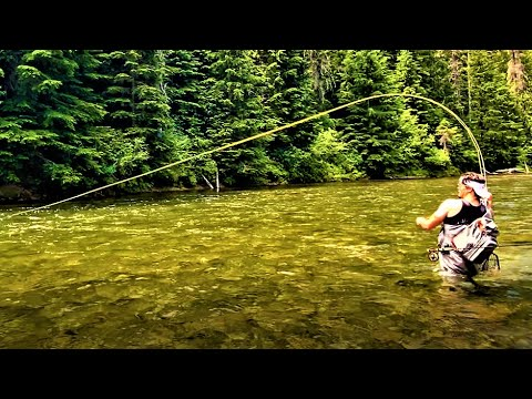 Fly Fishing for Wild Westslope Cutthroat Trout on the Saint Joe River Idaho (Short Fly Fishing Film)