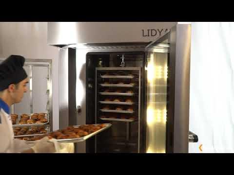 lidya 24 конвекционная печь