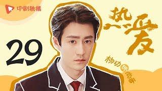 热爱 29(范伟、刘敏涛、张晨光、黄圣依、牛莉、啜妮、杨玏、王博文 领衔主演)