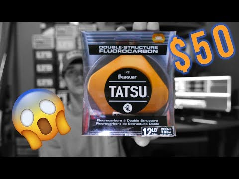 $50 FISHING LINE? Seaguar Tatsu, Is it worth it?