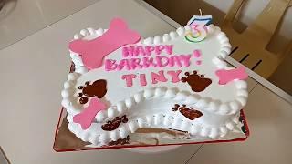 How To Decorate Dog Bone Cake || Dog Bone Cake