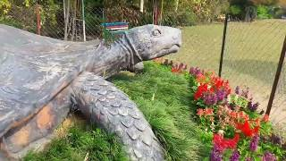 preview picture of video 'Diphu Recreation park   David khersa'