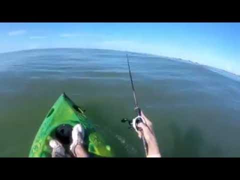 Um homem desse fala que é Pescador , Veja  o que aconteceu com o Willian do Rio Abaixo