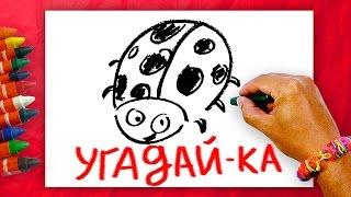 Загадки про Насекумых + Урок рисования.