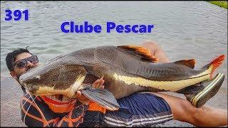 Pescaria de Gigantes no Clube Pescar - Fishingtur na TV 391