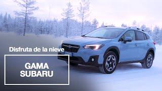 Tu próximo coche debería ser un Subaru Trailer