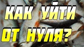 Где ловить плотву при резких изменениях погоды Зимняя рыбалка 2017 в феврале | Рыбалка в Устюге