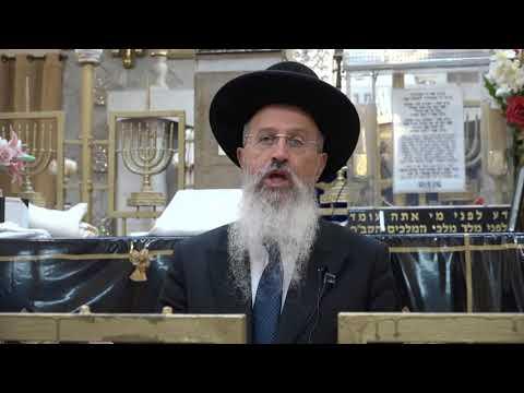 """צפו:  סיכום הלכות חנוכה עם הרב אברהם יוסף שליט""""א"""