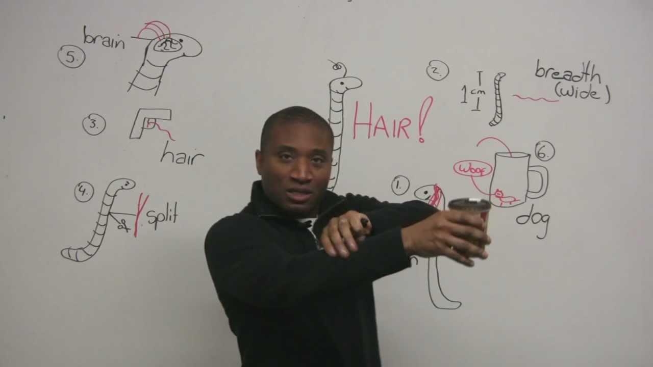 Hair Splitting Idioms   Beauty Within Clinic