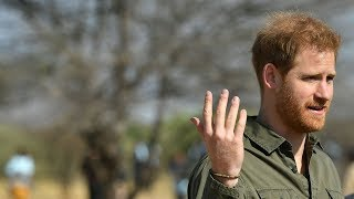 Prince Harry: 'climate change is an emergency'