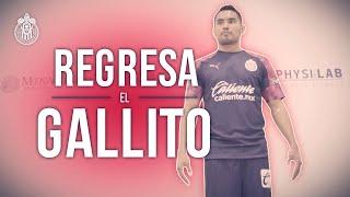 El regreso del 'Gallo' Vázquez a Chivas 🐓 | Especial